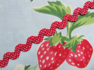 Polka Dot Ric Rac Trim - 3 Metre Length