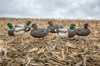Fullbody Duck Decoys - Per 12