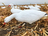 Bulk Decoy Club Snow Goose Fullbody Decoys Cheap