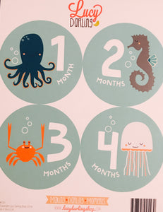 Snorkeling Adventure Stickers (1-12 months)