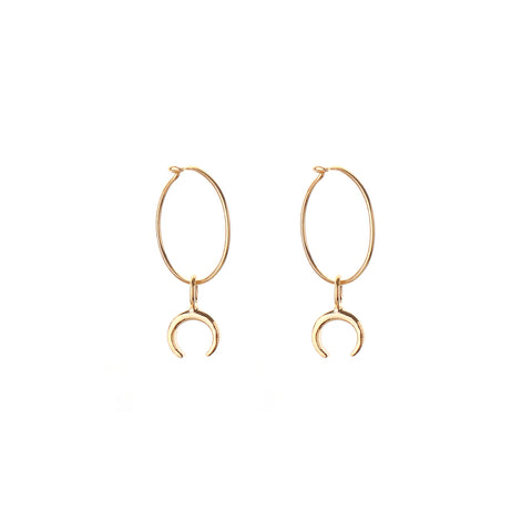 HOOP EARRINGS - smalll hoop - tusk, horn