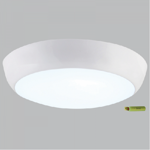 Ceiling Light - CF132 Emergency