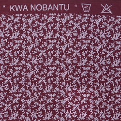 Kwa Nobantu - Grass Design
