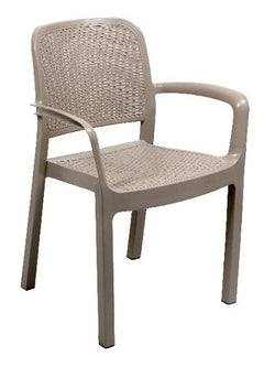 Protea Arm Chair