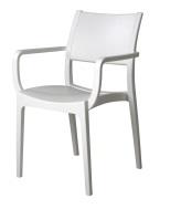 Verona Arm Chair - Solid Cafe Chair