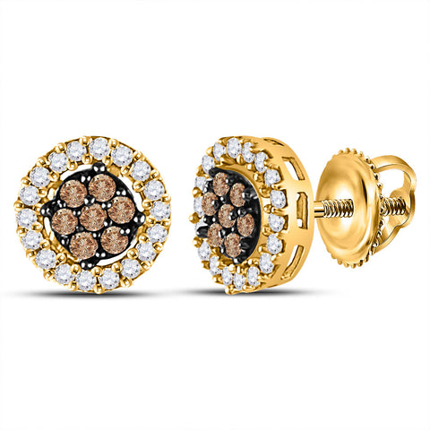 10k Yellow Gold Womens Brown Diamond Flower Cluster Stud Earrings 1/4 Cttw