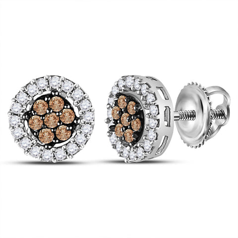 10k White Gold Womens Brown Diamond Flower Cluster Stud Earrings 1/4 Cttw