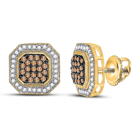 10kt Yellow Gold Womens Round Brown Diamond Octagon Cluster Earrings 1/2 Cttw