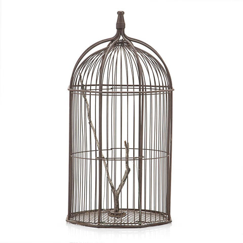 Birdcage with Tree Branch Perch