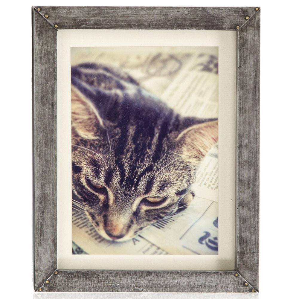 "BFA  100-937 Kitty Paper Metal Frame (8"" x 10"")"