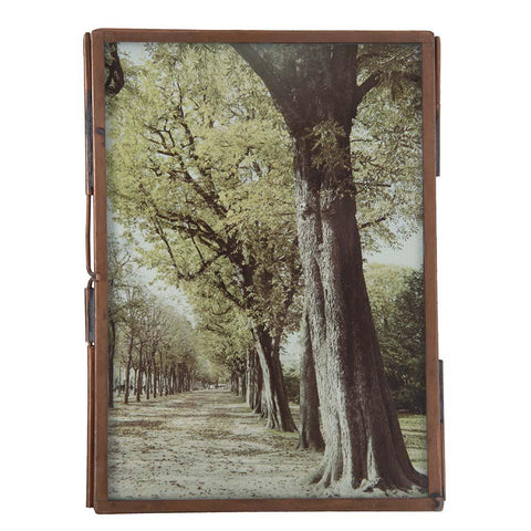 "BFA  100-912 Paris Copper Tree (4"" x 8.5"")"