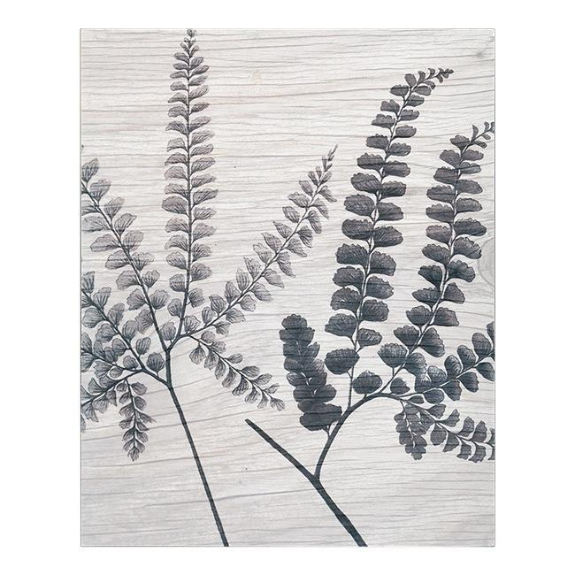 "100-335 Indian Ferns Black on White (16"" x 20"")"