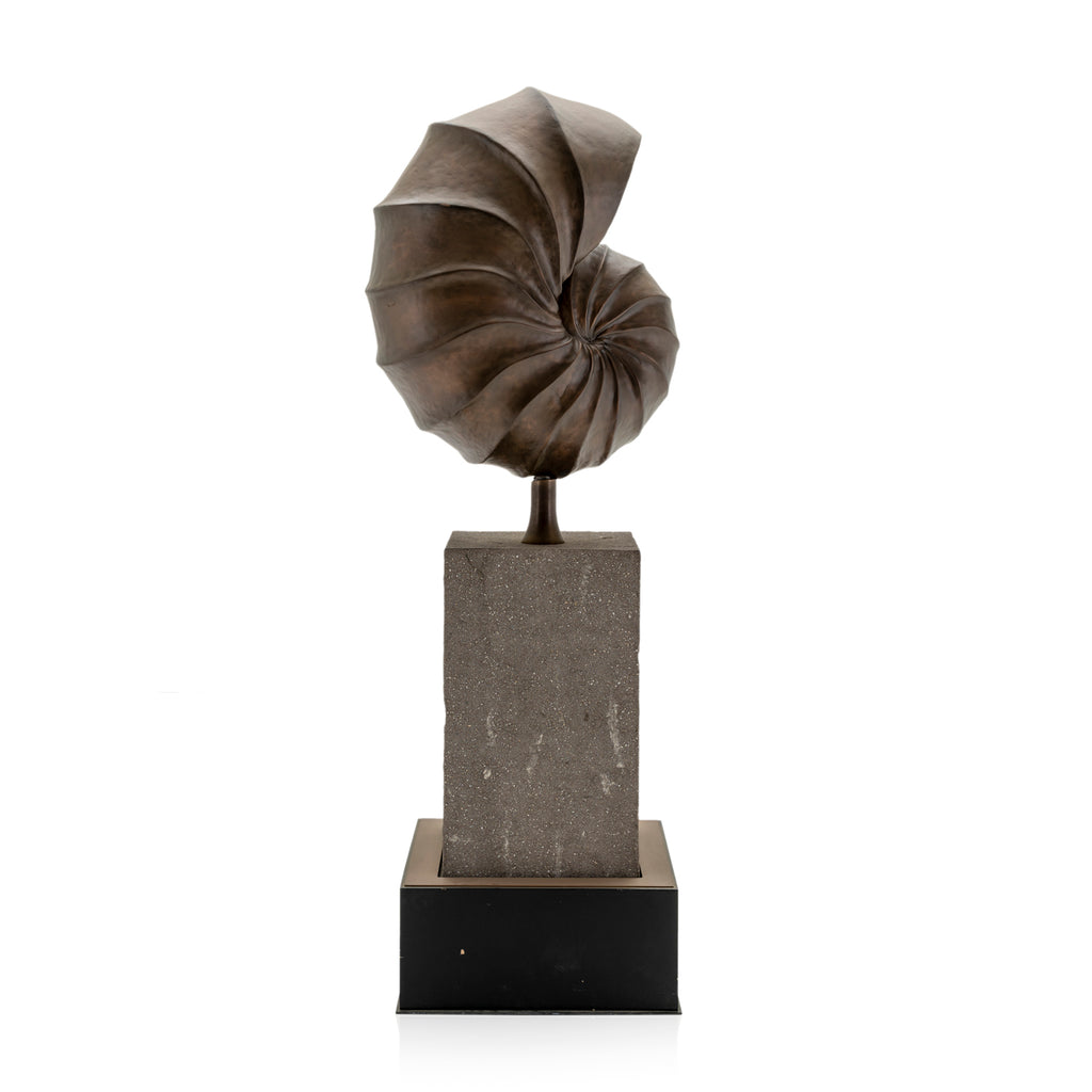 Large Bronze Shell Sculpture