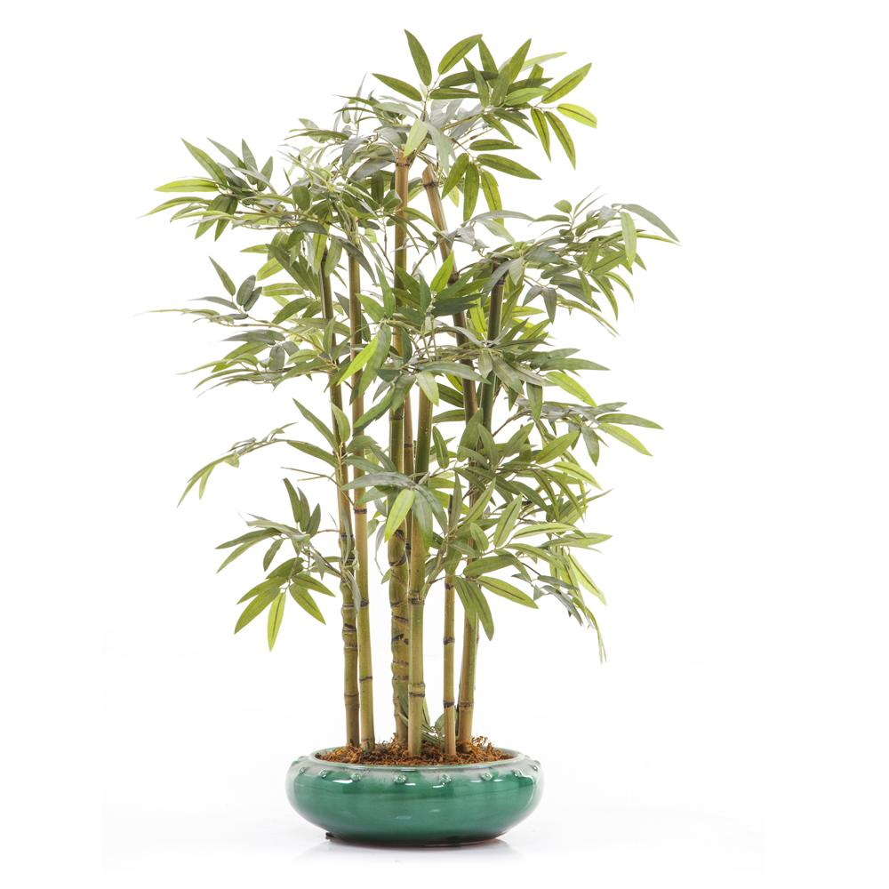 Bamboo Table Plant