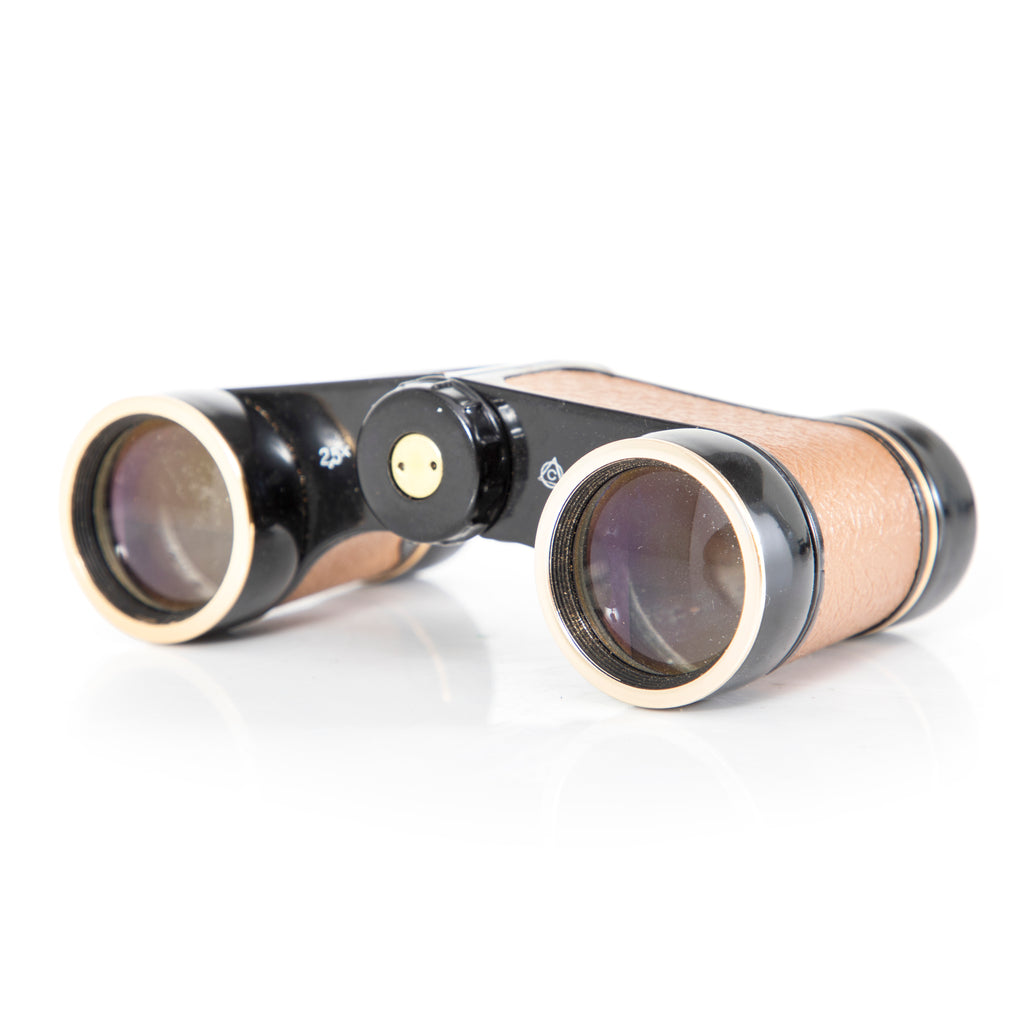 Black & Tan Vintage Binoculars with Case