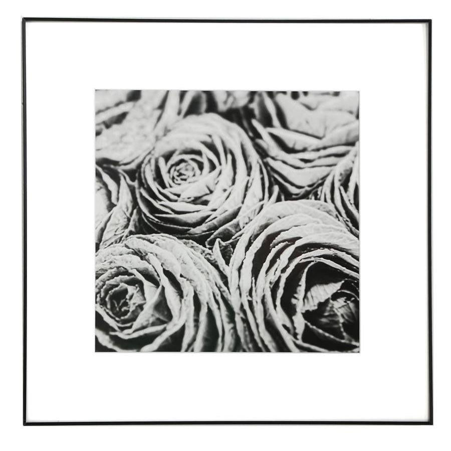"100-845 Cabbage Flowers (16"" x 16"")"
