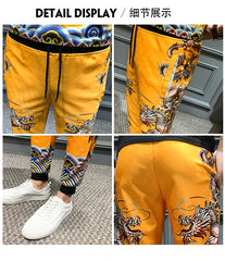 Men Joggers Hip Hop Dragon Printing Pants