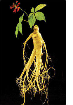 What is BulRoGeon Reg Ginseng?