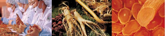 Environment of Ginseng Cultivation