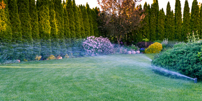 Chalet's Watering Care Tips