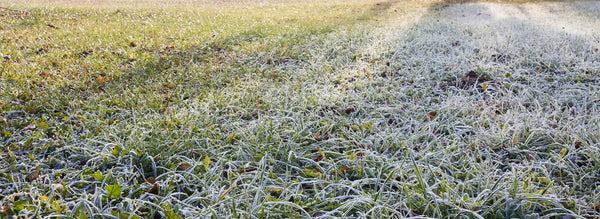 What's all this Fuss about Frost?