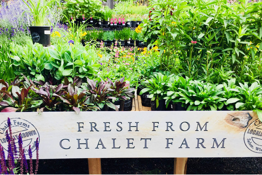 Chalet Farm Grown