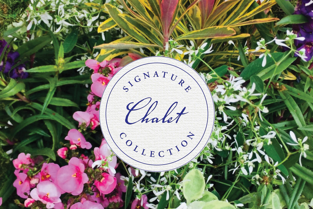 Chalet Signature | Outdoor