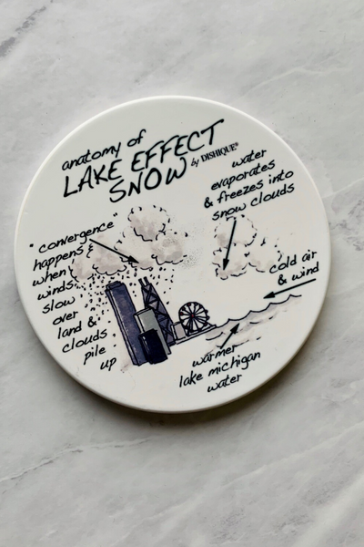 Coaster, Anatomy of the Lake Effect Snow