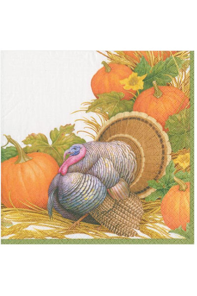 Caspari Thanksgiving Harvest Paper Cocktail Napkins
