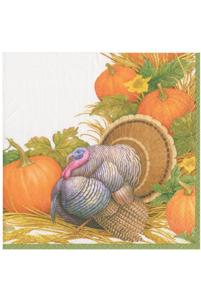 Caspari Thanksgiving Harvest Paper Dinner Napkins