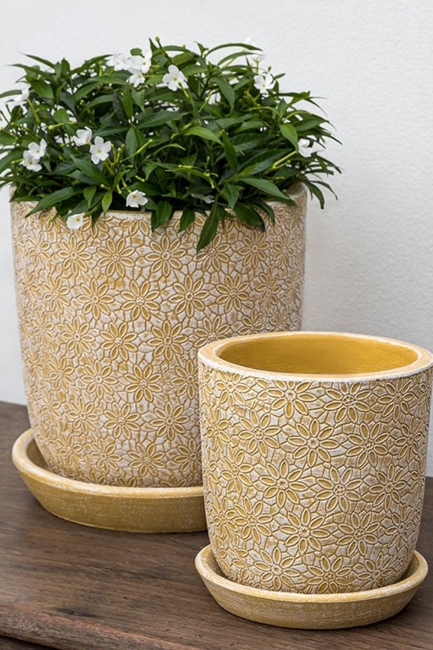Campania Marguerite Small Round Planter-Etched Yellow
