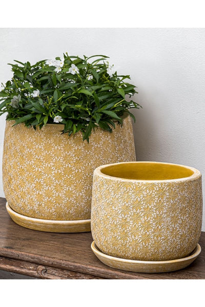 Campania Marguerite Large Round Planter-Etched Yellow