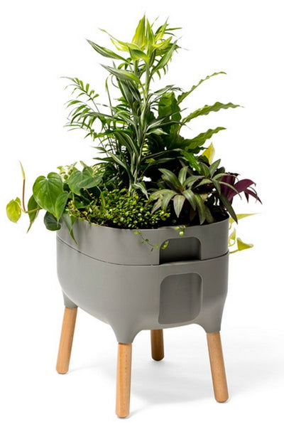 Urbalive Low Self Watering Planter w/ FSC hardwood legs