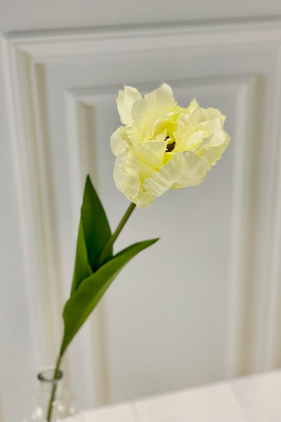 Silk Cream Parrot Tulip 26""
