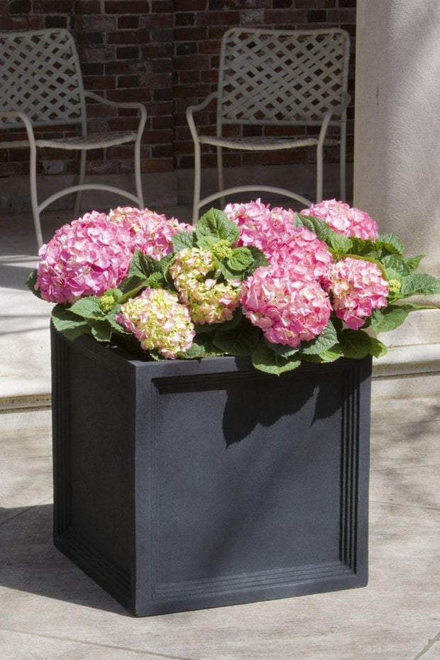 Onyx Black Square Sandhurst Planter 22""