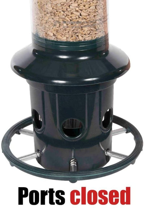 Brome, Bird Feeder Squirrel Buster Plus
