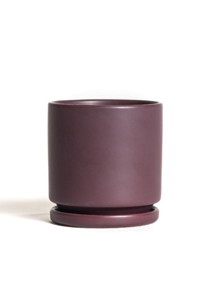 Bordeaux Cylinder Pot 8.25""