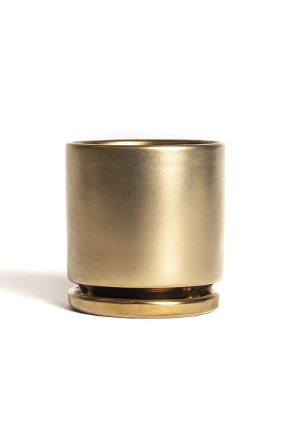 Metallic Gold Cylinder Pot - 8""