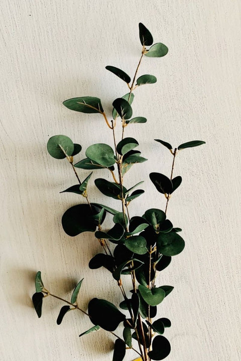 "Silk Eucalyptus Stem 36"" Blue"