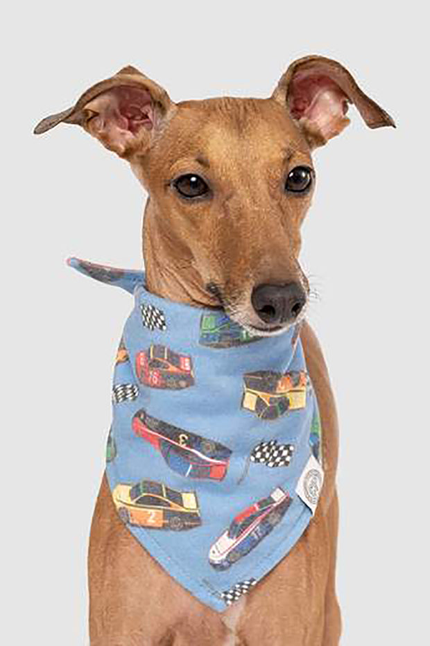 "Canada Pooch Follow Me Bandana ""Race Car"" L/XL"