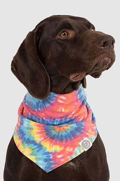 "Canada Pooch Follow Me Cooling Bandana ""Tie-dye"" Medium"