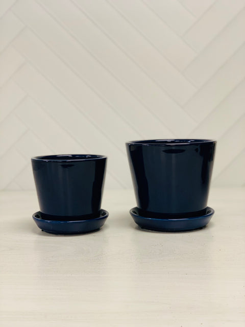 Cosmopolitan Royal Blue Pot 6""