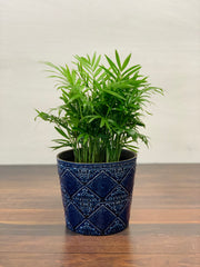 Sanctuary Blue Pot 6.75""