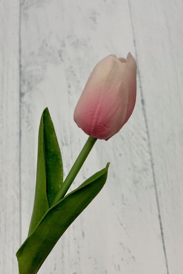 Silk Pink Mini Tulip 14""