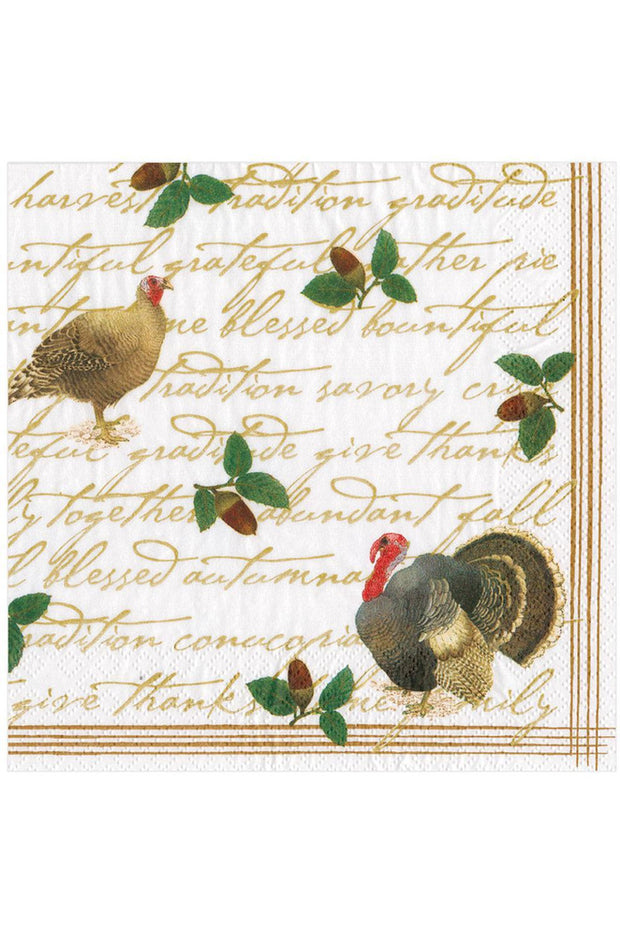 Caspari Founders' Thanksgiving Paper Dinner Napkins