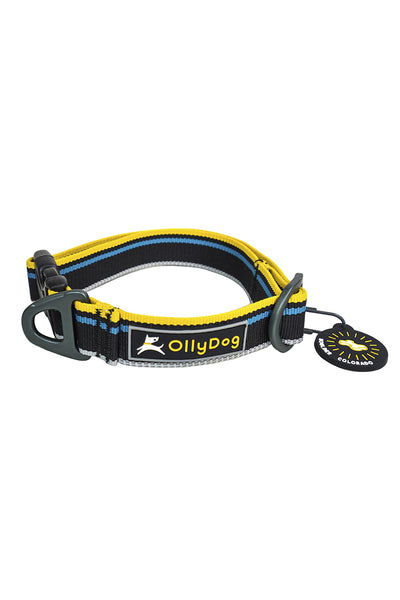 Olly Dog Urban Trail Reflective Collar - Anthracite