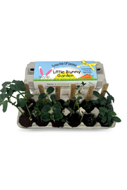 Little Bunny Garden Grow Kit