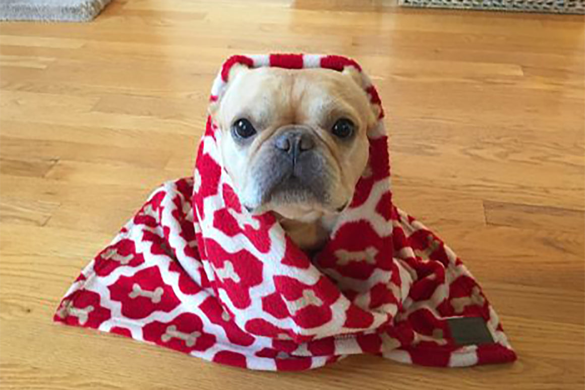 Red Bone Dog Blanket