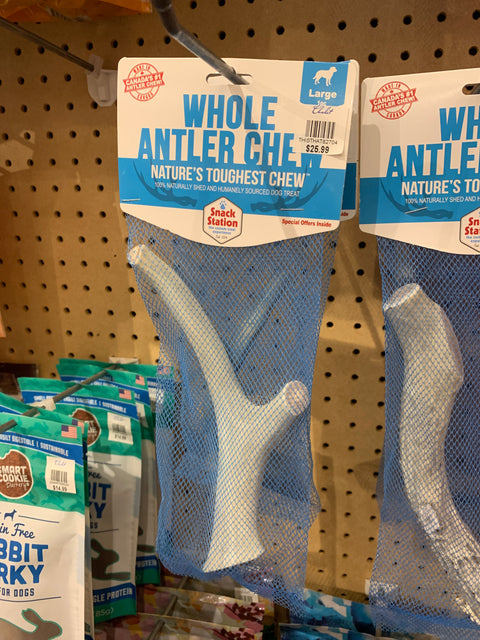 This & That Whole Antler Chew (Large 1 pc)