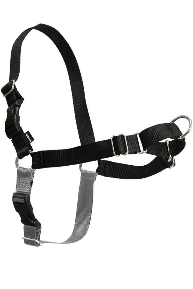 PetSafe Easy Walk® Harness, No Pull Dog Harness